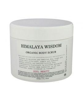 Himalaya Wisdom